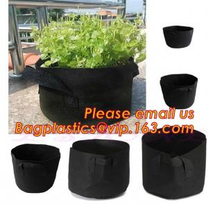 China fabric pots grow bag felt garden bag with handle,Hydroponic Grow Bag 1 Gallon Containers With Handle,Eco-friendly High q on sale