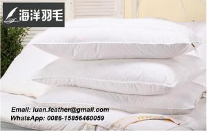 China The Sea Feather Professional Factory Cheap Feather And down Pillow White Duck Feather Down Pillow on sale