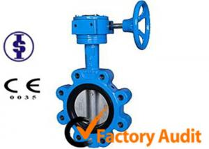 China Double Eccentric Gear Operated Butterfly Valve JIS With Pneumatic Actuator on sale