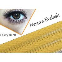 China Pro Natural C Curl 0.12mm 8/10/12mm Black Individual False Eyelashes 3d 4d 5d Silk Eyelash on sale