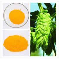 Yellow Powder Xanthohumol Humulus Lupulus Extract 98% Purity CAS 6754-58-1