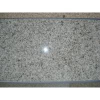 Polished Granite Tile