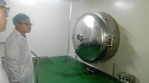 China 600KG High Efficiency Vacuum Freeze Dryer Big Capacity -60℃ Freezing Dryer For Food on sale