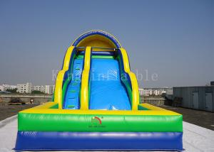 China Toddler Inflatable Water Slide Customized 0.55mm PVC Tarpaulin Double Lanes on sale