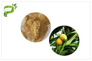 China Natural Plant Extract Powder Anti - Inflammatory Mangiferin From Mango Leaf on sale