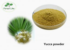 Quality Health Care Plant Extract Powder Yucca Extract Powder Treatement Diabetes for sale