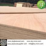 rotary sapele veneer furniture plywood