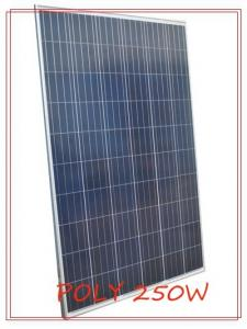 China Waterproof life of 5-15years Polycrystalline pv module 250W with anodized aluminum frame on sale