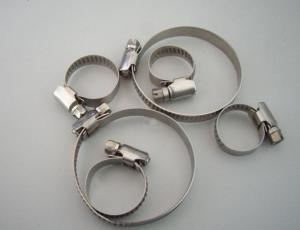 China Stainless steel hose clamps 304/316 on sale