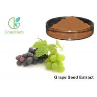 Healthy Care Pure Grapeseed Extract 95% Polyphenols Anti - Oxidant For Skin