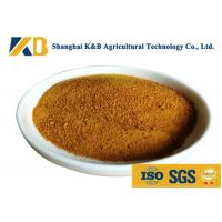 China CGM Granules Corn Gluten Feed For Rich Amino Acid Vitamin And Mineral Matters on sale