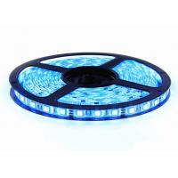 12V Colour Changing LED Strip Lights , Dimmable LED Strip Lights MultiColour 5m