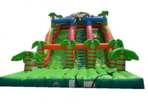 China Wavy Kids Outdoor Inflatable water Slide Pool / Inflatable Water Toys on sale