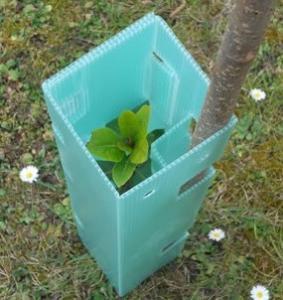 China 2mm 3mm tree vine , tree protector on sale