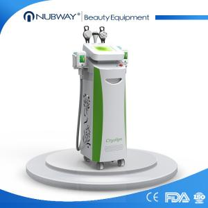 China all beauty salon used cryolipolysis fast effective TPU handle body slimming machine on sale