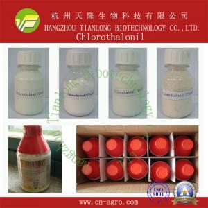 China Chlorothalonil on sale