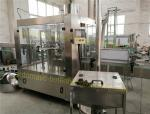 Still Water / Mineral Water Bottling Filling Machine Production Line , Small Monoblock CGF8-8-3
