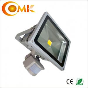 China Buying from Manufacturer 30W outdoor led flood light with 2 years warranty on sale