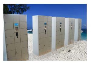 China OEM / ODM Smart Electronic Door Locker , Indoor Security Locker For Beach on sale