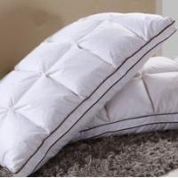 Wholesale Mainstays despicable Down Pillows Baby Pillows