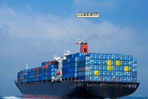 China Shipping forwarder from China port to DAMMAN/RIYADH/JEDDAH/DAMIETTA/PORT SUDAN/ALEXANDRIA on sale