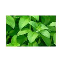 Stevia Leaf Extract