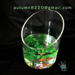 China Modern acrylic aquarium fish tank on sale