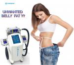 Cryolipolysis Fat Freeze Slimming Machine For Body Sculpture / Weight Reduction