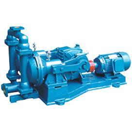 China electric diaphragm pump on sale