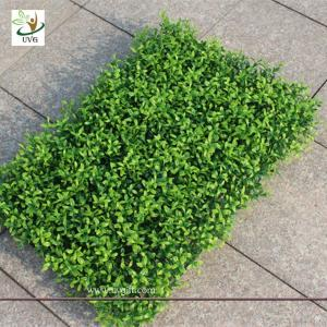 China UVG GRS06 Outdoor Plastic Boxwood Plants Artificial Grass Mat Garden Landscaping on sale