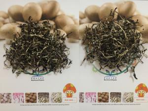 China Factory Price NEW CROP Dried White Back Black Fungus Slices/Dices/Whole on sale