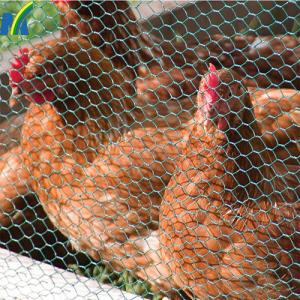 China Chicken Wire Netting Hexagonal Wire Netting Poultry Mesh on sale