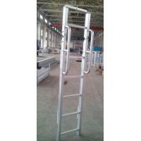 Waterproof Aluminum step ladder