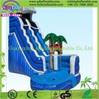 Big water slides, commercial inflatable slide,giant inflatable water slides for adult