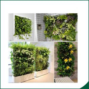 China 56 Pocket Planter Bag Vertical Planting Bags Indoor Outdoor Herb Pot Decor on sale