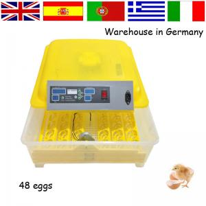 China Family type small poultry farm incubator automatic HT-48 48 eggs on sale