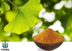 China CHP2015 Ginkgo Biloba Leaf Extract 24/6 Ginkgolic Acid on sale