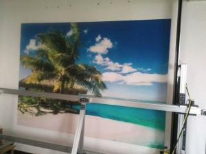 China wall inkjet printer to print mural on wall directly on sale