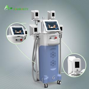 China 4 heads fat freezing Cryolipolysis slimming machine with 12 hours non-stop working system on sale