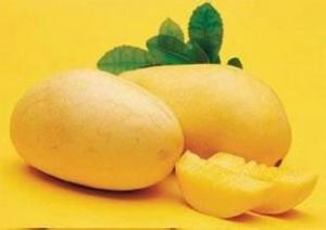 China Mango Flavour Essence Liquid or Powder form flavourant on sale