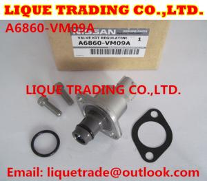 China 100% Genuine overhaul kits NISSAN A6860-VM09A , A6860VM09A valve 294200-0360 on sale