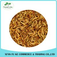 Fishing Lures Products Delicious Pet Food Dried Mealworm