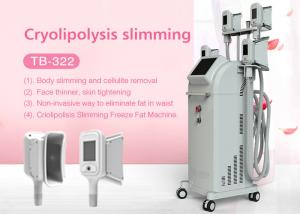 China Professional Cryolipolysis Cavitation RF Body Shaping Fat Reduction Machine with 5 handles on sale