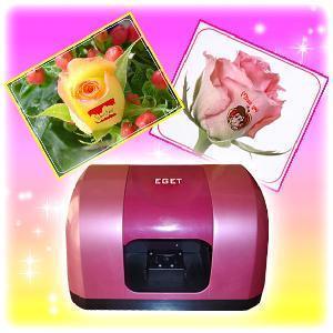China Fashion Flower Printer (SP-F06B2) on sale