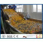 Línea de transformación anaranjada ahorro de energía con la máquina de embotellado del vidrio/ANIMAL DOMÉSTICO