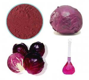 China Natural Red Cabbage Color Powder on sale