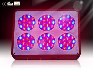China Best Sale High Power LED Plant Grow Light 383*283*85mm for Greenhouse RCAPO6 on sale