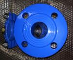 2 Inch PN16 Good quality Ductile Iron Flanged Y Strainer Made in China