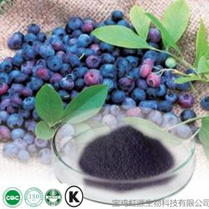 China Best quality purity fresh bilberry extract 5% 10% on sale