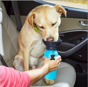 China 2017 hot auto dog mug,pet cup out drinking water,newest travel dog water bottle  china supplier  Pet Outdoor Water Drink on sale